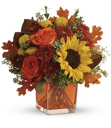 Teleflora's Hello Autumn Bouquet from Arjuna Florist in Brockport, NY
